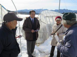 大雪被害・倒壊ハウスを調査(小鹿野町)