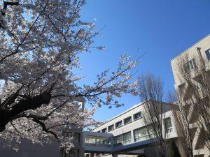 令和2年度埼玉県当初予算案への賛成について