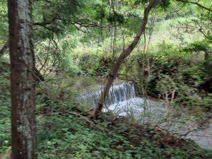 加治丘陵の自然を守れ!阿須山中サッカー場・メガソーラー建設予定地を視察